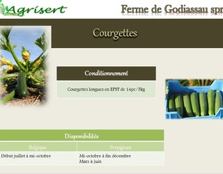 Agrisert sprl - Courgettes
